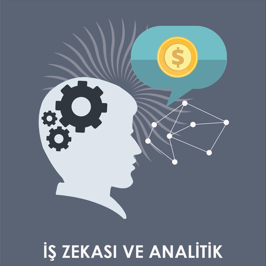 İş Zekası ve Analitik