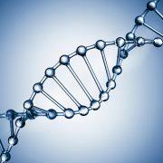 Bulutta Veri Güvenliği İçin Genetik Kodlama Kullanılabilir Mi?